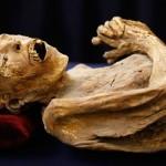 mummy_1472607i (1)