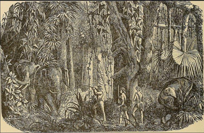 யானை வேட்டை-2